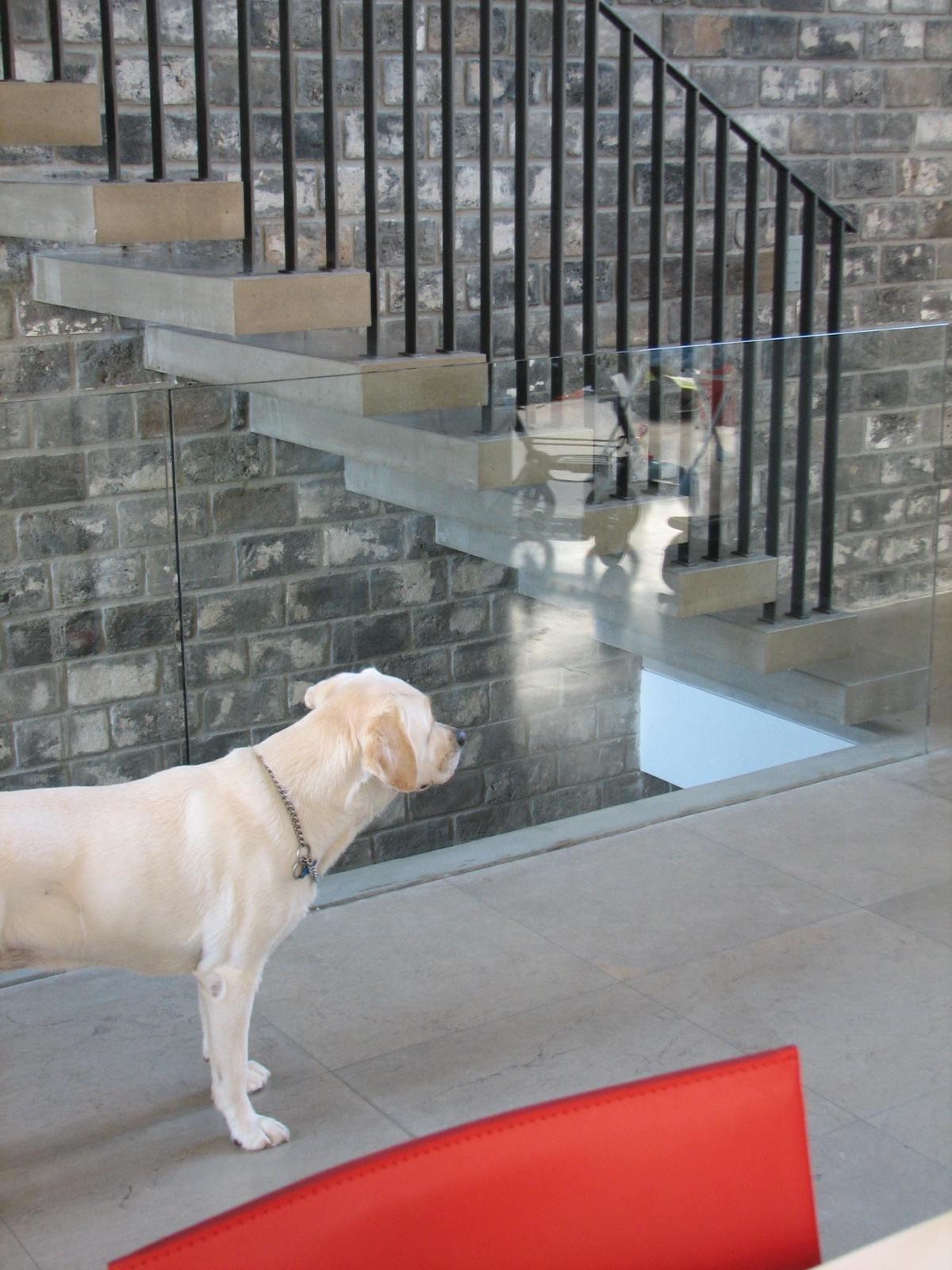 מדרגות בטון תלויות קיר לבנים מפירוק. בחירת חומרי גמר בשוהם